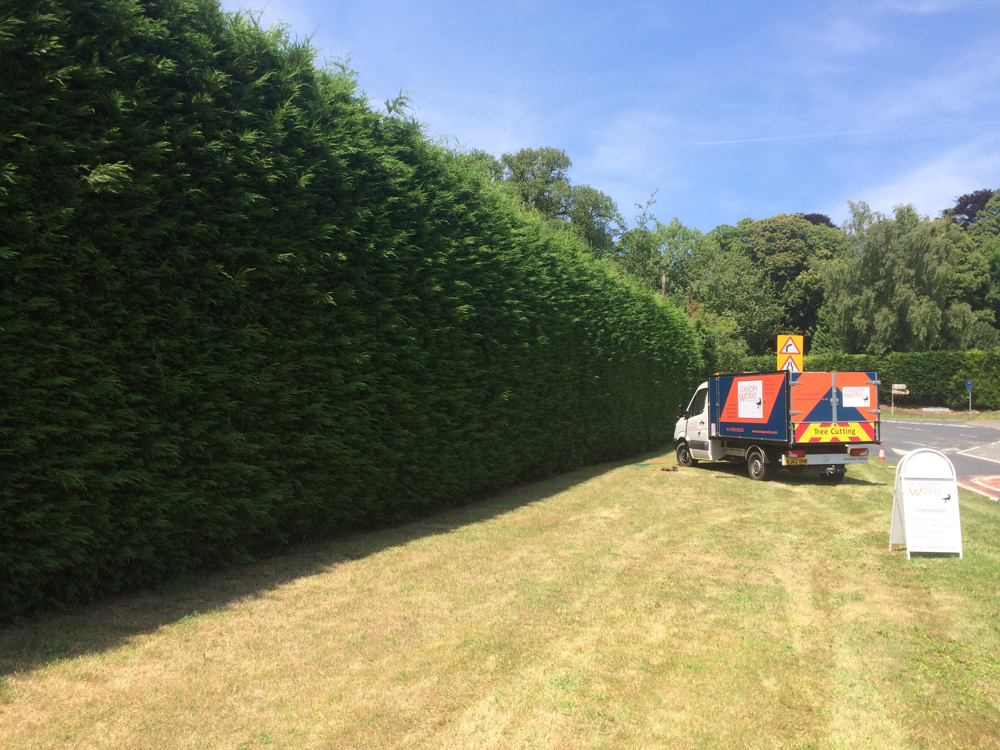 Tree surgery services – Kent, Relocatable